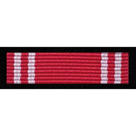 Medal Siły Zbrojne w Służbie Ojczyzny - Brązowy (nr prod. 15 br)