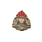 Państwowa Straż Pożarna (PSP) - PIN